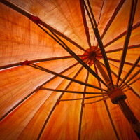 orangeumbrella