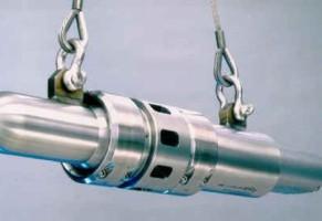 Air guns: i cannoni ad aria compressa che spaventano sardi e balene